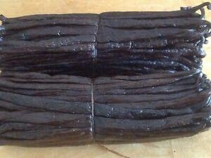 """10 Bourbon Madagascar Vanilla Beans 4-5"""" Grade A Free shipping"""