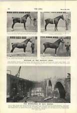 1900 Jessie Carr Popgun Campaign Demolition Of Kew Bridge Hackney Show Winners