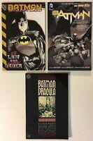 Batman & Dracula: Red Rain, Court of Owls vol. 1, No Law and A New Order TPB Lot