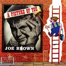 CD JOE BROWN A PICTURE OF YOU TALKING GUITAR POP CORN LONELY ISLAND PEARL SHINE