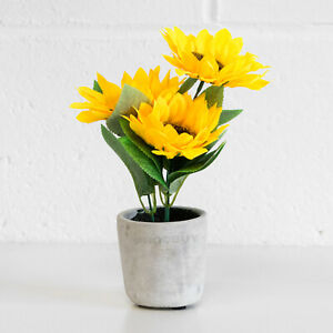 24.5cm Small Artificial Sunflowers House Plant Flowers Fake Faux Grey Cement Pot