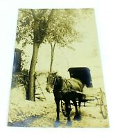 Antique Vintage RPPC Postcard HORSE & CARRIAGE Unposted MAN STANDING IN TREE