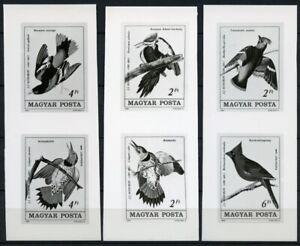 Ungarn 1985 Audubon Vögel Gemälde Zeichnungen Birds 3760-3765 Foto-Entwürfe/ 232