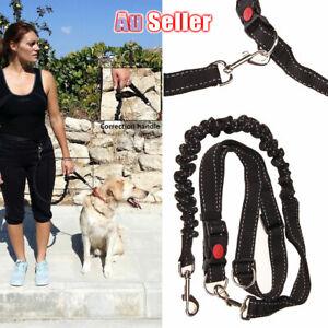 Adjustable Pet Waist Belt Dog Running Lead Leash Elastic Hands Free Walk Jogging