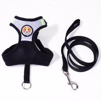 Breathable Pet Dog Harness & Leash Set Chest Strap Vest Double Layer Luxury Mesh