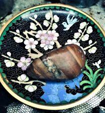 💛 Ocean Spirited Raw Hand Polish Banded Wood Crystal Agate Eyes Energy Stone