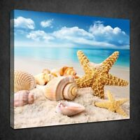 SEASHELLS STARFISH ON SANDY BEACH BATHROOM BOX CANVAS PRINT WALL ART PICTURE