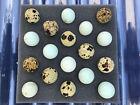 18 (+EXTRAS!)  Silver / Celadon Blue Coturnix Quail Eggs **FREE SHIPPING**