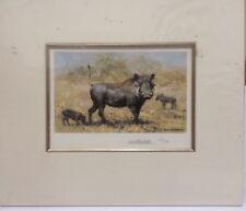 David Shepherd - Warthog Family - Mounted ( In Stock)