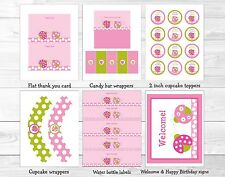 Pink Green Ladybug Printable Birthday Party Package