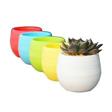 Small Succulent Planter Colorful Plastic Plant Flower Pots Set of 5, Mixed I8S4