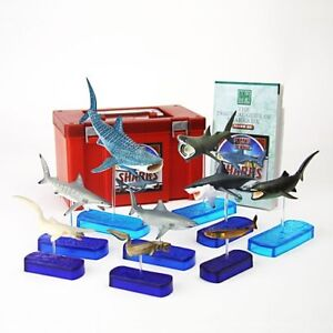 NEW!! Colorata Real Figure box Set Shark Deluxe from JAPAN F/S