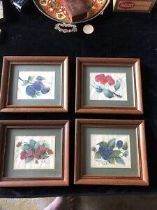 Vintage Set (4) Custom Framed Botanical Fruit Prints Blueberries Cherry Straw