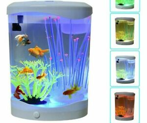 LED Light Mini Aquarium Desktop Decoration Fishes Tank Automatic Conversion Lamp