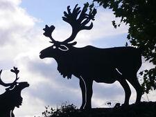 ELCH 3D DOPPELGEWEIH 60cm Rentier Weihnachten Hirsch Rost Edelrost Metall Tier