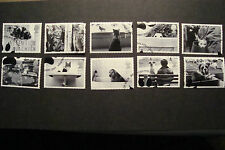 GB 2001  Commemorative Stamps~Cats & Dogs~Very Fine Used Set~UK Seller