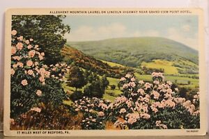 Pennsylvania Bedford Grand View Point Hotel Lincoln Hwy Allegheny Mtn Postcard