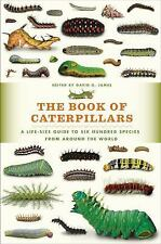 The Book of Caterpillars: A Life-Size Guide to Six Hundred Species from Around t