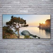 Tulup Acrylglasbilder Wandbilder Dekobild 120x60 See Baum Landschaft