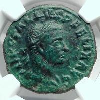 TREBONIANUS GALLUS  Viminacium Bull Lion Legions Ancient Roman Coin NGC  i78075