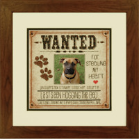 Dimensions Counted Cross Stitch Kit Dog Wanted 20cm x 20cm