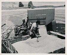 Culture c. 1950 - Moissonneuse Mc Cormick-Deering USA - GF 359