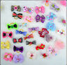 50pcs Lot Assorted Pet Cat Dog Hair Bows with Rubber Bands Grooming Accessories