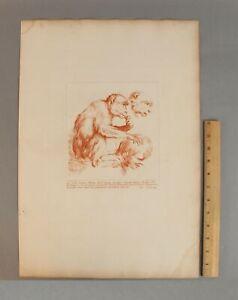 18thC Antique 1735 ARTHUR POND Etching, 16thC Carracci MONKEY Cleaning MAN