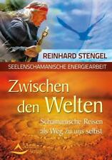 Zwischen den Welten von Reinhard Stengel (2014, Taschenbuch)