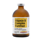 Vitamin B Complex Fortified Injection, 100 ml