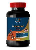 Amino Acids - L-CARNITINE 500MG - Strength & Endurance Enhancer Pills - 1 Bot
