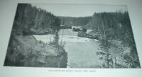1898 Antique Print YELLOWSTONE RIVER ABOVE THE FALLS Yellowstone National Park