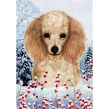 Winter House Flag - Apricot Poodle 15016