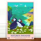"Vintage Travel Poster Art CANVAS PRINT 8x12"" Pembrokeshire UK Puffins"