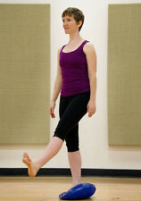 """Core Stability Balance Fitness Special Needs Pilates Strengthen Disc 13""""  8003"""