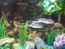 Aquarium magnetic rock ledges, custom rock ledge, rock, aquarium decorations