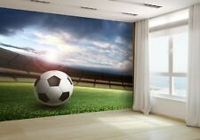 Stadium and Soccer Ball Wallpaper Mural Photo 38727339 premium paper