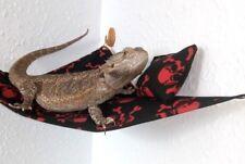 Hammock + FREE EXTRAS Bearded Dragon Rat Leopard Gecko Reptile Accessories Snake
