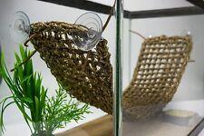 Reptile Lounger For Lizards Terrarium Attach To Glass Walls Gecko Iguana Hammock
