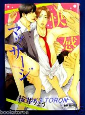 Kaikan Massage Comic - Ryo Sakurai /Japanese Yaoi Manga Book   Japan