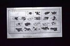 Geroglifici dell'almanacco, Messico Incisione del 1850 L'Univers pittoresque