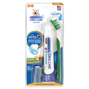 Nylabone Advanced Oral Care Natural Toothbrush And Toothpaste Dental Kit Dog