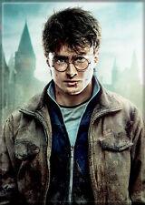 Harry Potter Photo Quality Magnet: Harry Potter