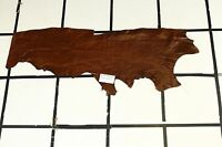 Gorgeous Sokolac Brown Scrap Leather Hide Approx. 3.25 sqft. Q73W10-7