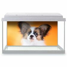 Fish Tank Background 90x45cm - Papillon Cute Puppy Dog Pet  #21426