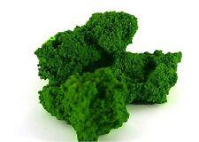 WWS Feuillage Clou vert Clair 70g