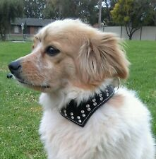 Medium Black Leather Dog Collar Cravat with Black Suede Lining & Crystals