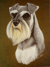 Paintings/Posters/Prints Schnauzer Collectables