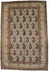 Floral Paisley Pattern Allover 7X11 Handmade Semi Antique Oriental Rug Carpet