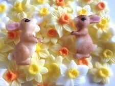 6 Edible Easter Bunny Rabbit Spring Sugarpaste Cake Toppers Christening Weddings